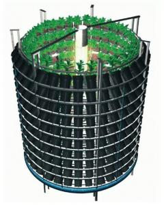 post-5005-0-41395500-1359478320_thumb.jp