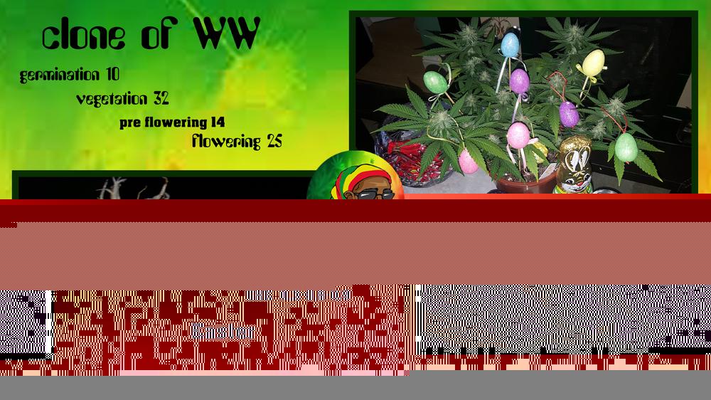 592939f3ba158_cloneofWW10-32-14-25.thumb.jpg.8c76ffb29d9d38c1ea4018ada709df5a.jpg