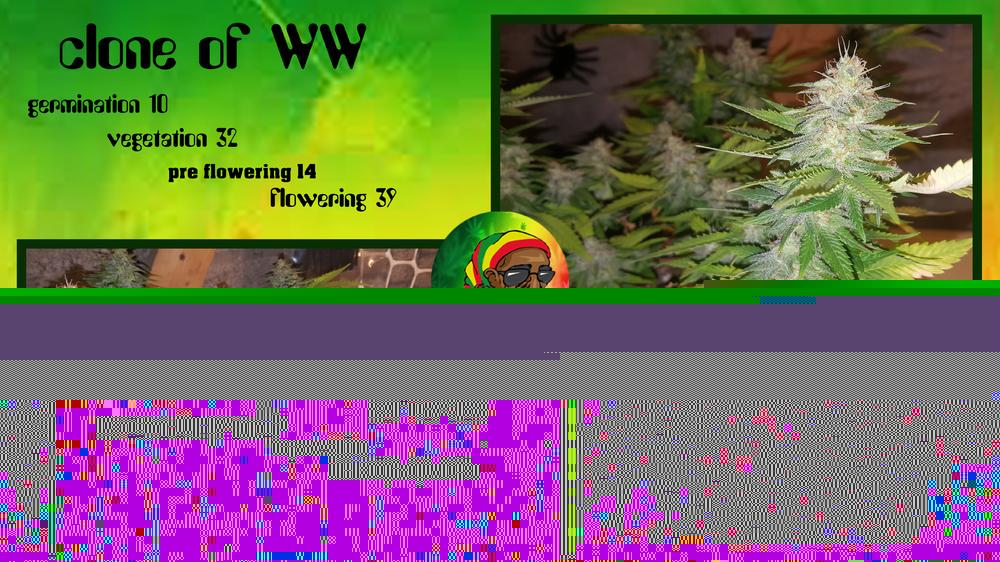 592939fee01ba_cloneofWW10-32-14-39.thumb.jpg.eeabaad0bcc9bc0c4d28a3f6422457cf.jpg