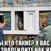 lyka-pit