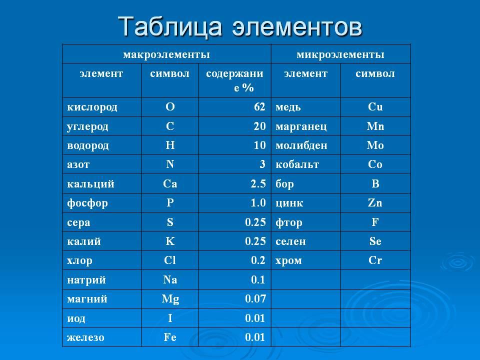 imgonline-com-ua-dexifYlv5ywHdZ0nL.jpg.45e79df9d1605e0a0e02f6582b26ebff.jpg