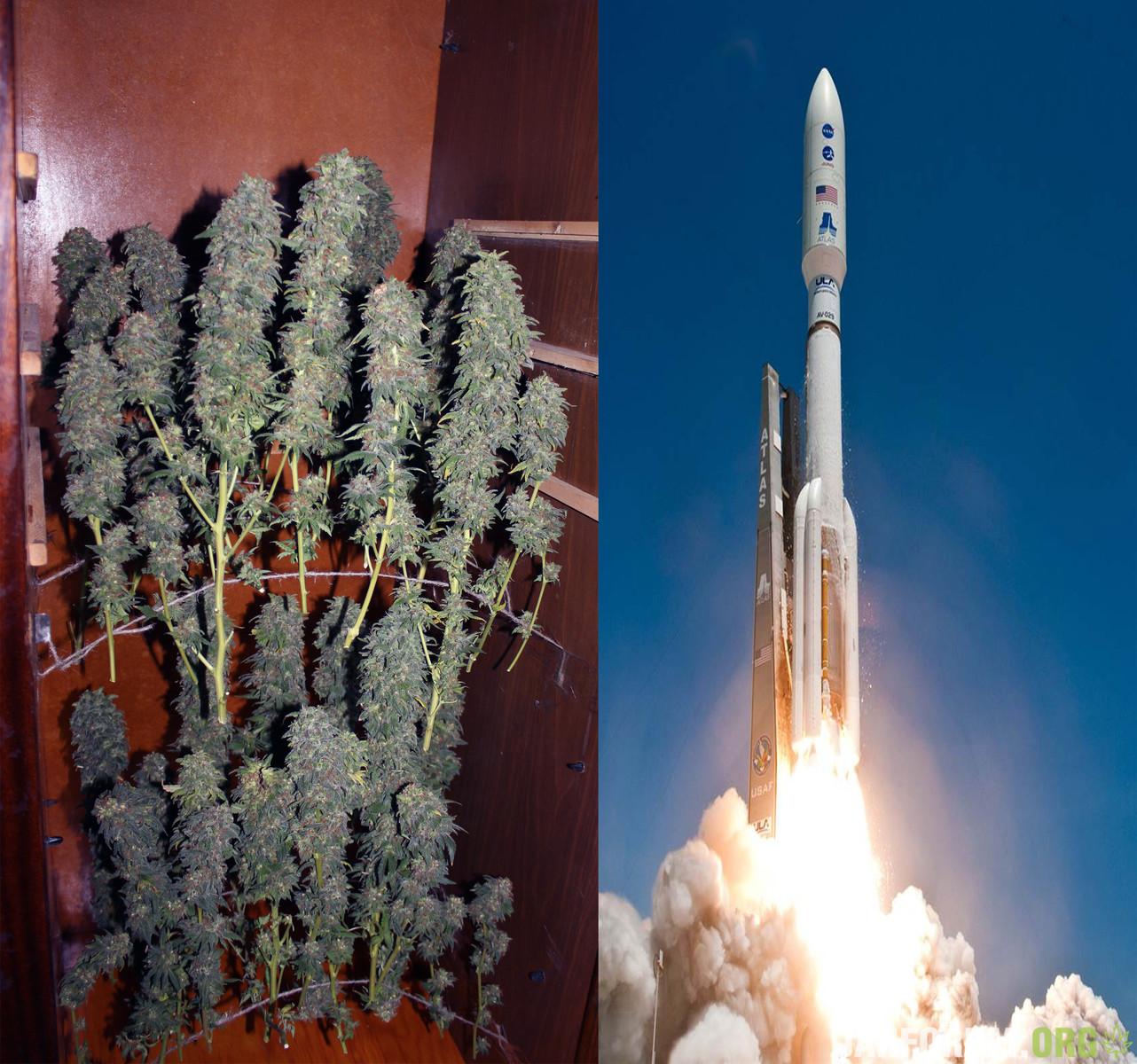 Forward in Space!