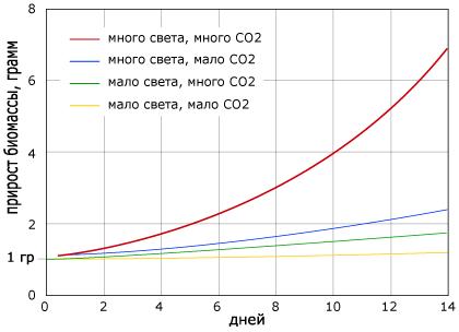 влияние углекислоты.png