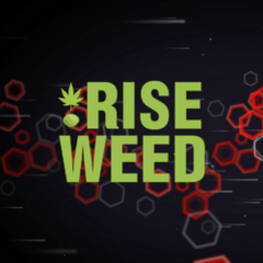 RISEWEED