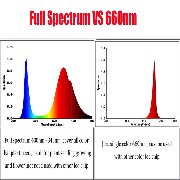 10-3-LED-380-840nm-1-6-10x3w-600ma.jpg