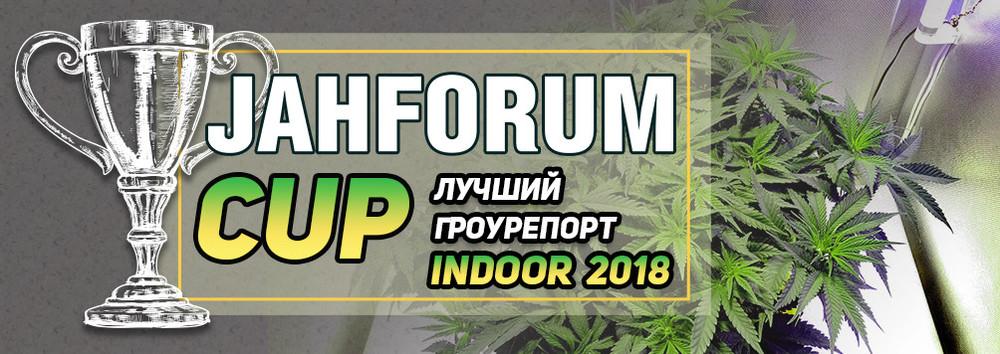 1-Лучший Гроурепорт Indoor 2018-1004x356 (1).jpg