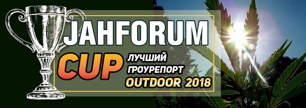 2-Лучший Гроурепорт Outdoor 2018-1004x356.jpg
