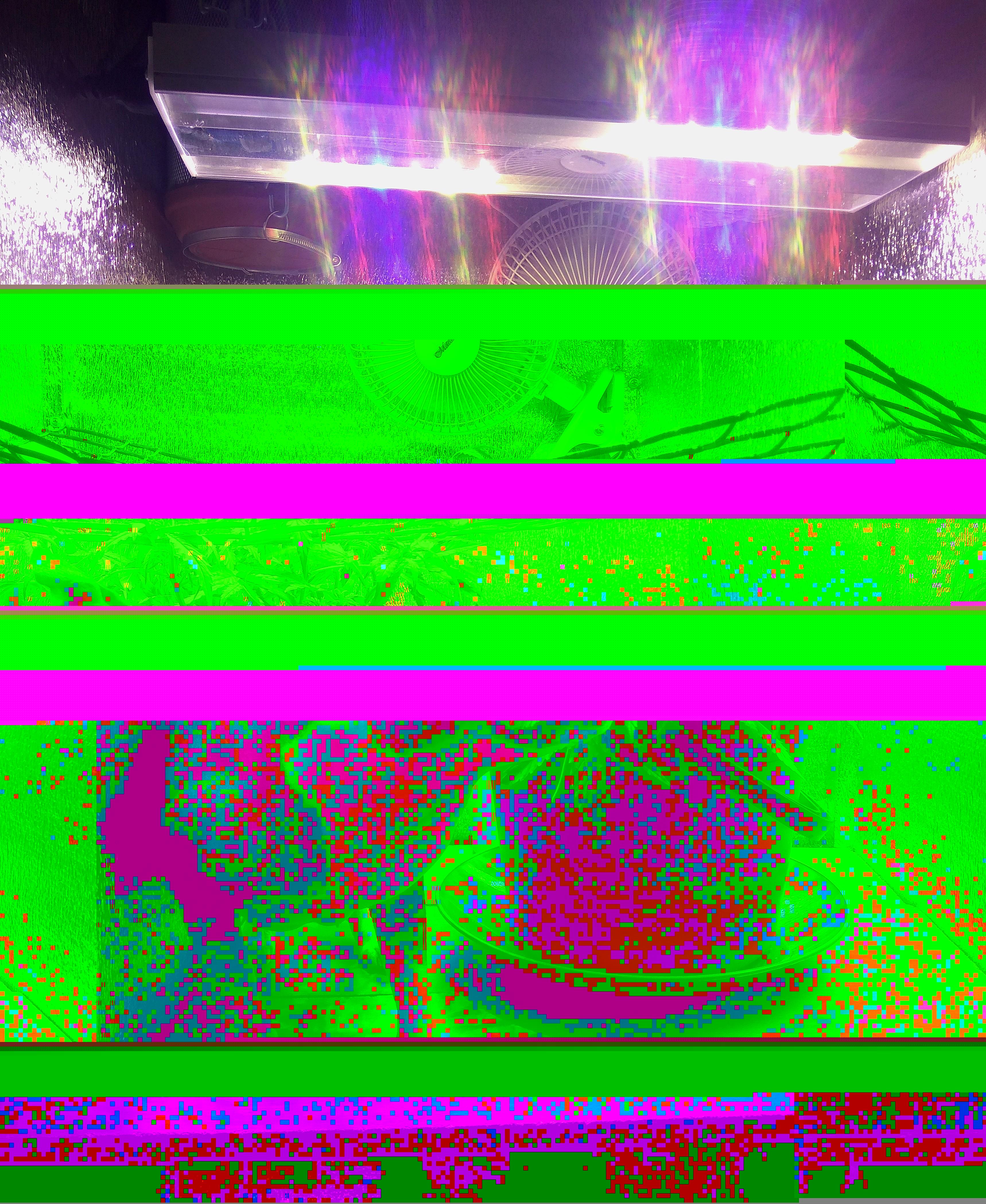 IMG_20180515_090135.jpg