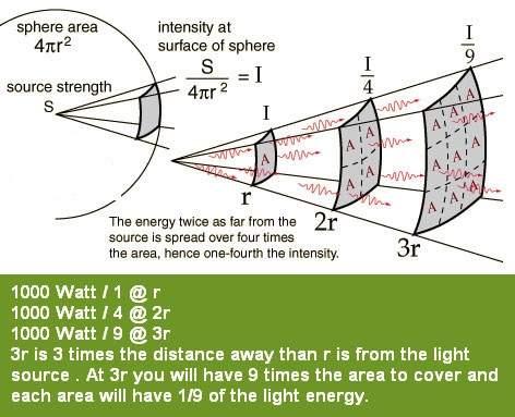 light-square-law-marijuana.jpg.b210e22208a8bf41da4b663aa66b490f.jpg