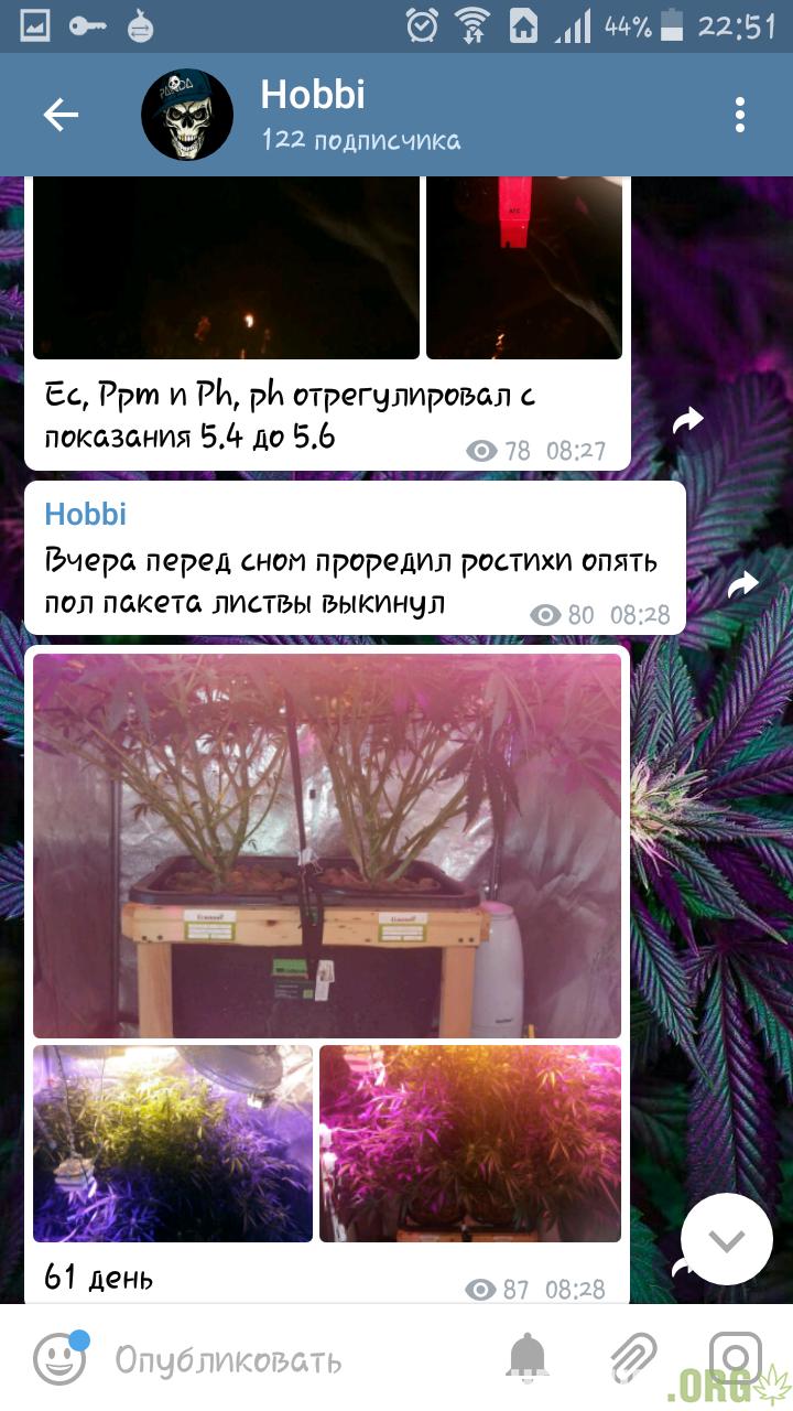 Screenshot_2018-05-01-22-51-49.png