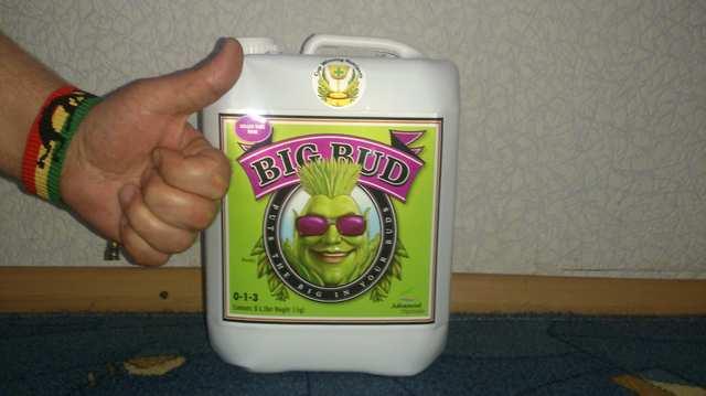 Big Bud Liquid.JPG