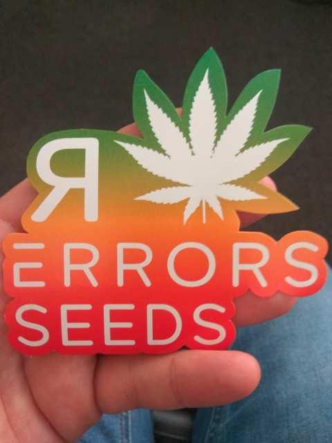 Errors seeds.jpg