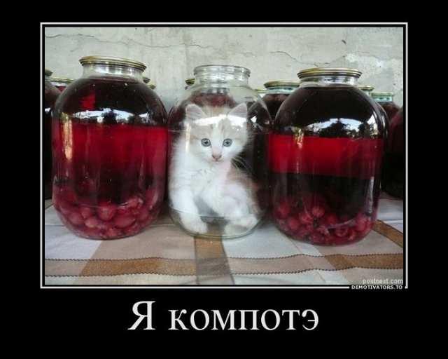 1370705053 lol54.ru 014