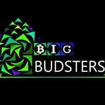 BigBudsters