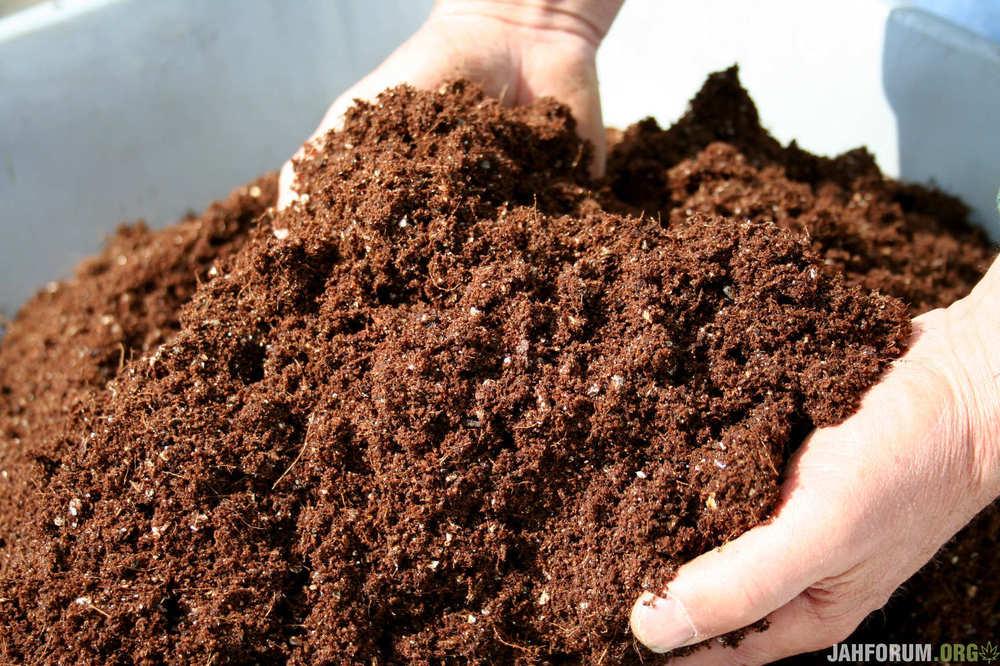 Compost011.thumb.jpg.1e06a560291d653489c301ca8fa86523.jpg