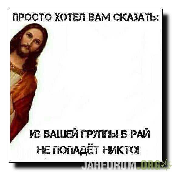 1VuekB33_P8.jpg