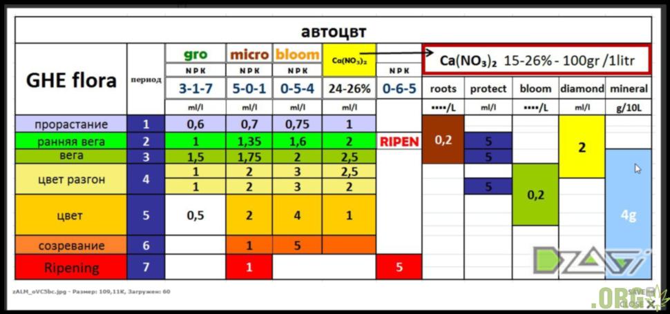 таблица кормления.PNG