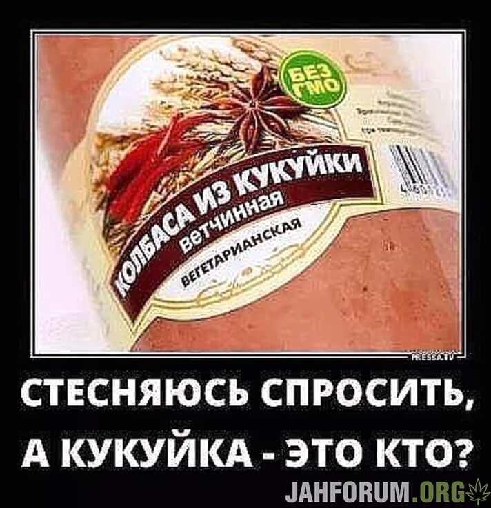 FB_IMG_15419304642655141.jpg