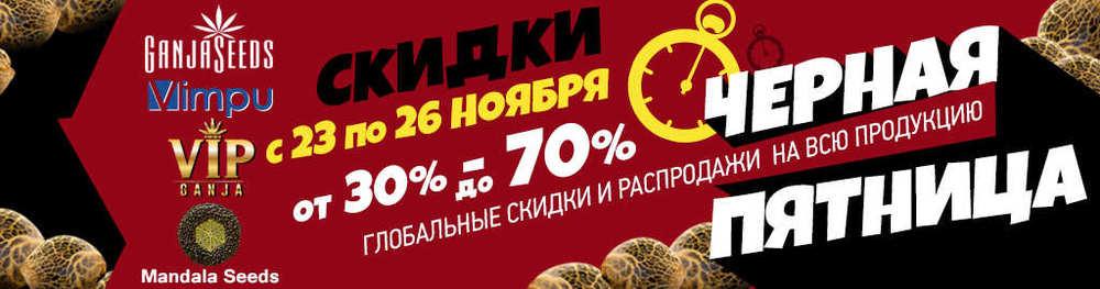 ganjaseeds.org.jpg