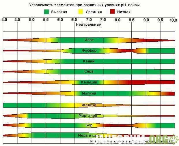 pH-soil-nutrient-uptake.jpg.454f4ceb5560f51188a429f15bc9b0b5.jpg.27d8fe25e2084d48f80fc98c0242f633.jpg