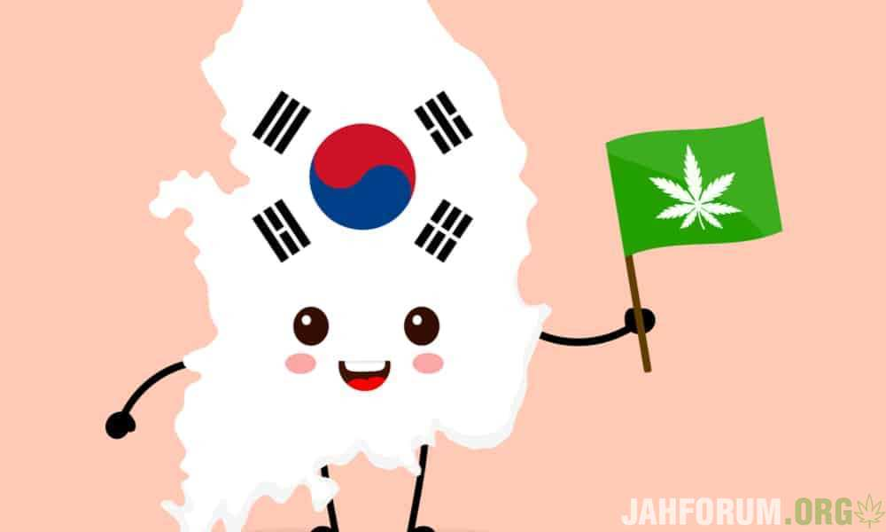south-korea-legalizes-medical-cannabis-featured.jpg