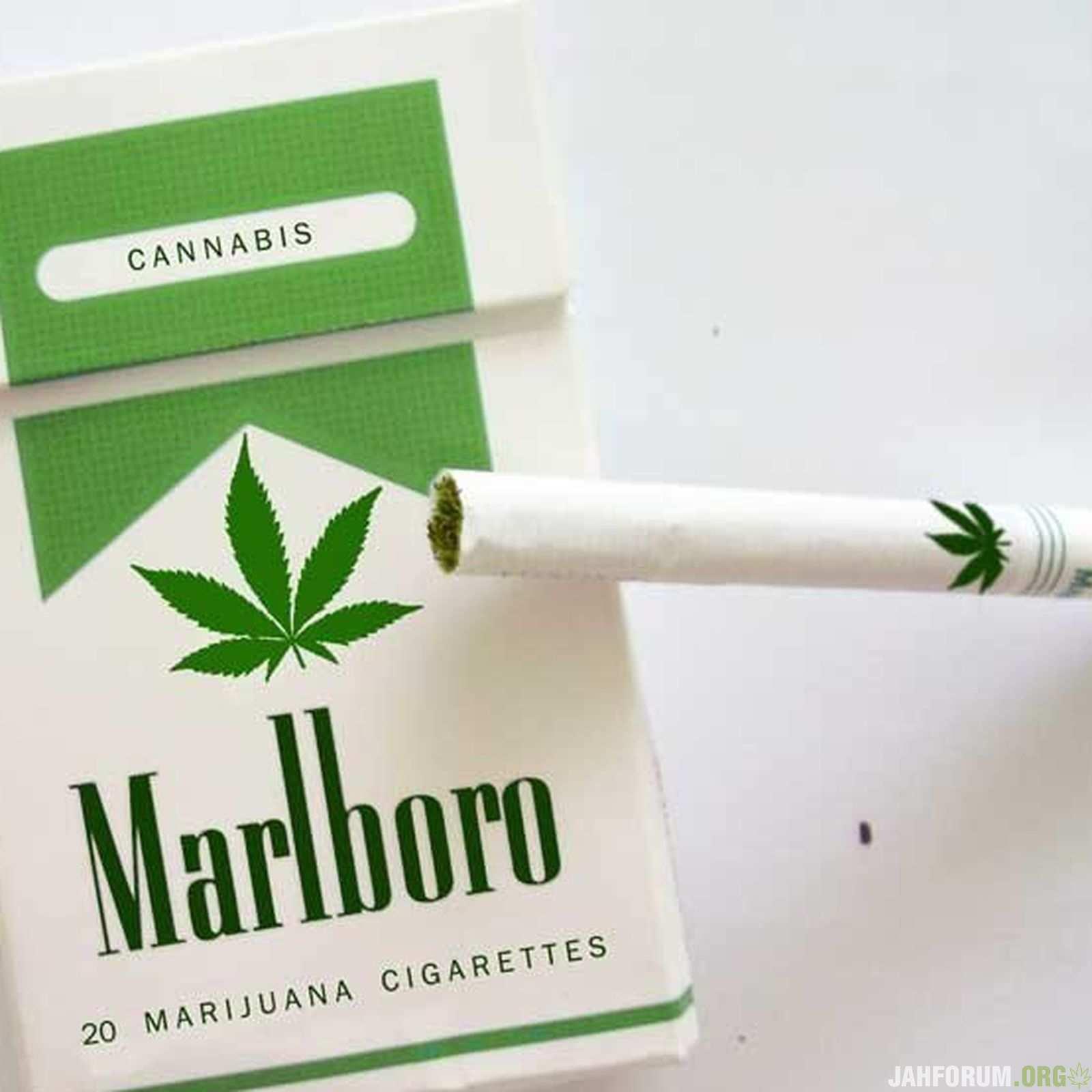 Владелец бренда Marlboro начал вести переговоры с крупной канадской конопляной компанией