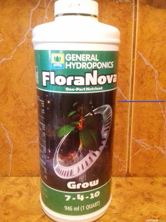 grow2.jpg
