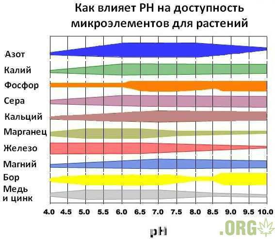 PH_mikroelementi-min.jpg