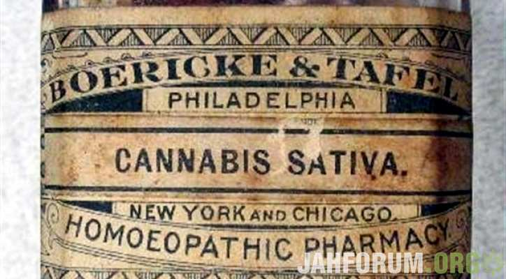 medical-cannabis-marijuana-weed-tincture-alcohol-concentrate.jpg