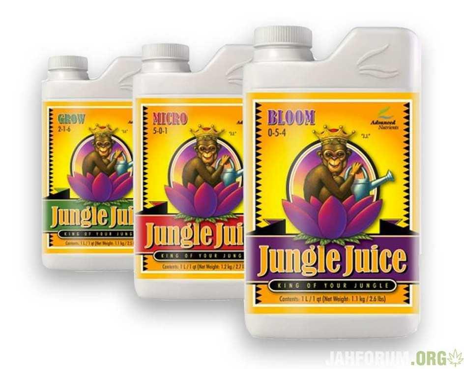 Advanced-Nutrients-Jungle-Juice-3-Part.thumb.jpg.f34e687a092bf10a5b19115c8a77bc40.jpg