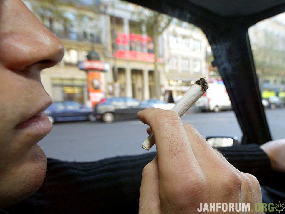Канадская полиция не видит резкого увеличения количества дтп автомобилей после легализации марихуаны