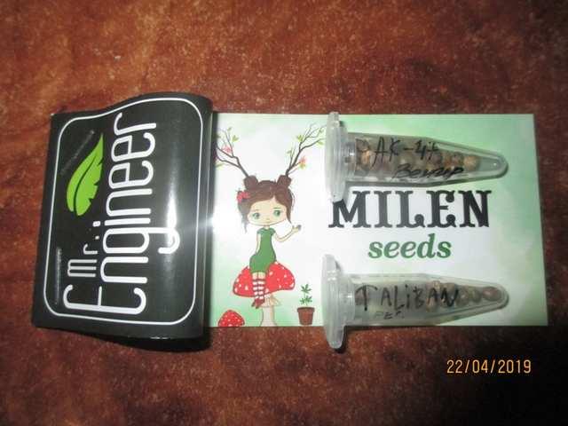 ...орешки от милой Милы!!!)))