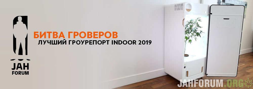 Indoor-1000x354.jpg
