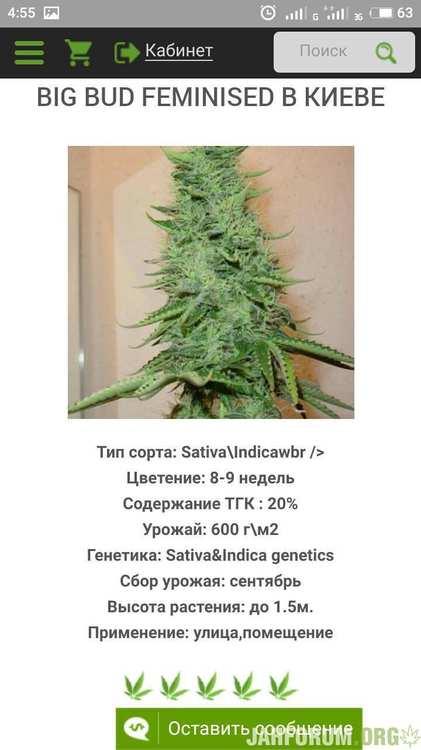 S90319-045506.jpg