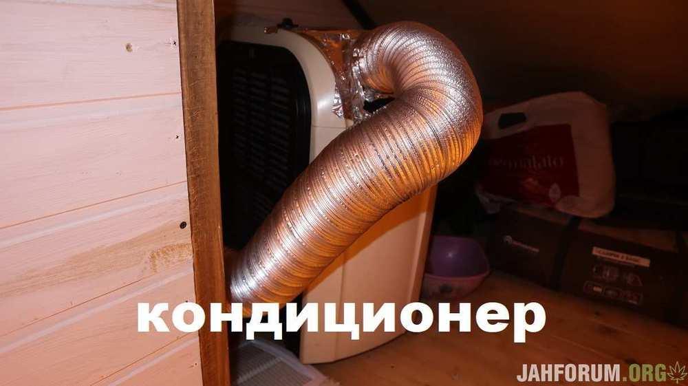 IMG_4140.JPG