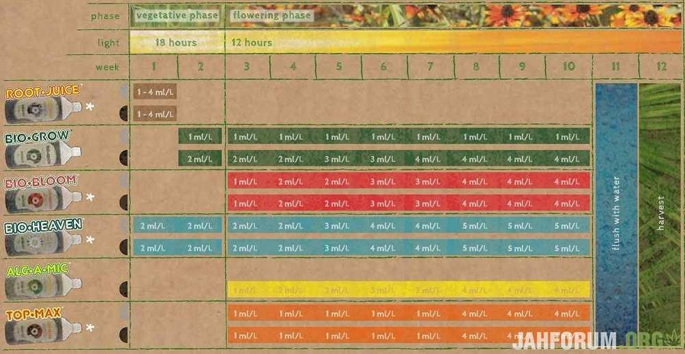 fertilizante-biobizz-try-pack-indoor-villa-urquiza-D_NQ_NP_690655-MLA26885167671_022018-F.thumb.jpg.1abb8aadefc76e658a526564530fc2bb.jpg