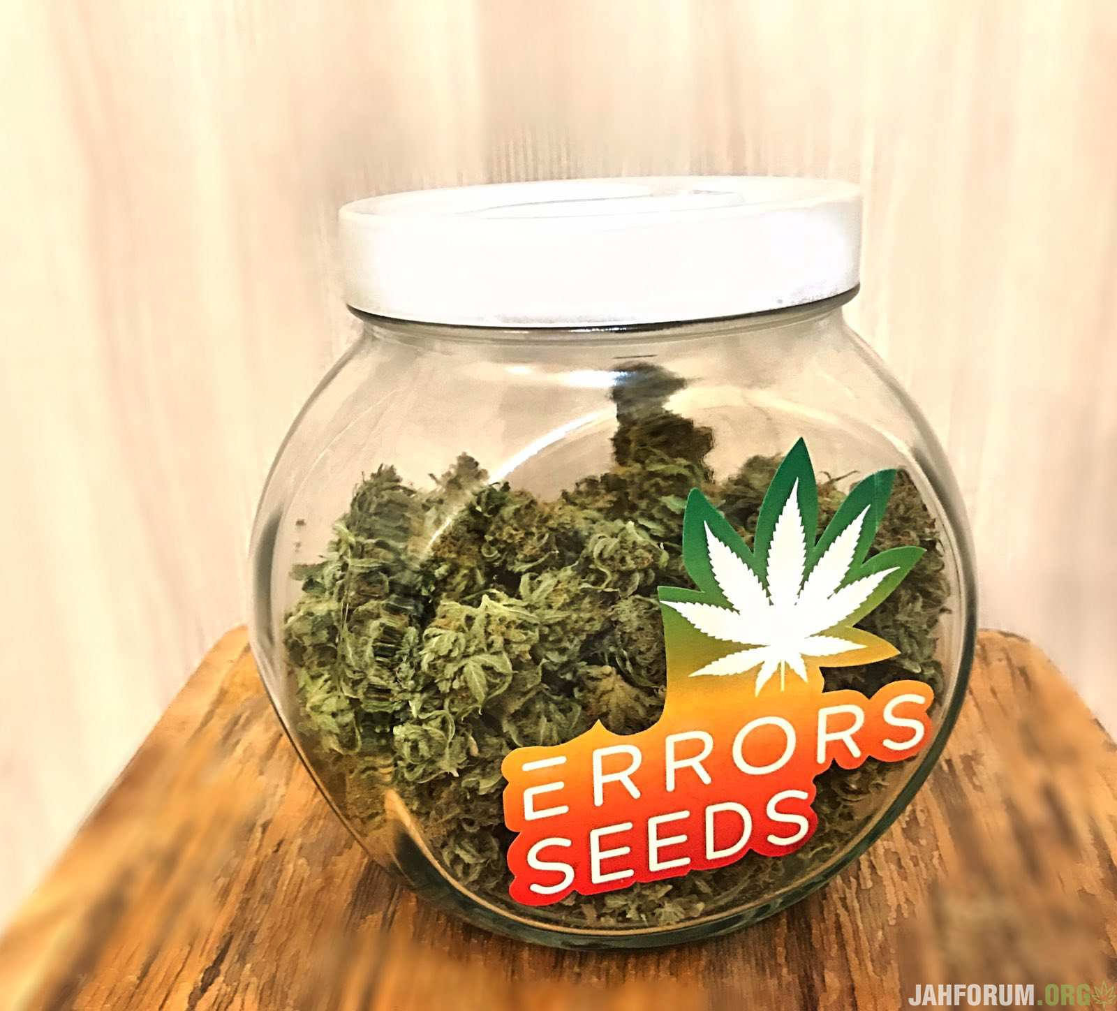 Errors Seeds