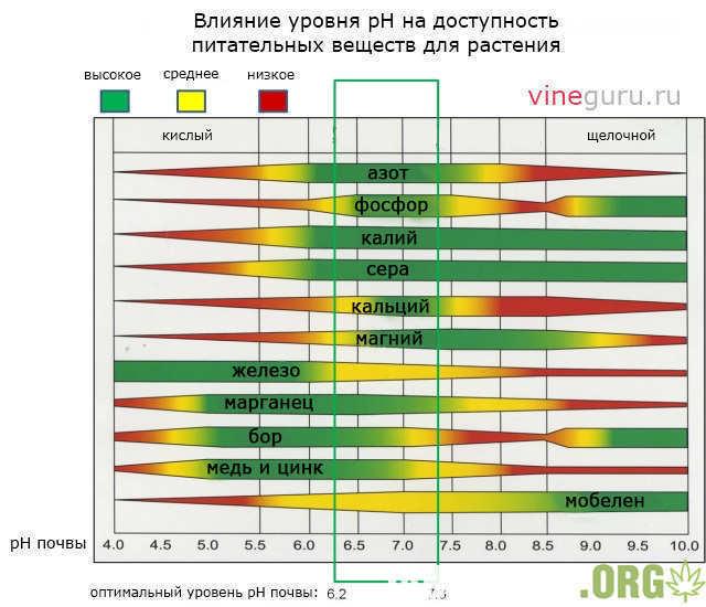 ph-nutrients.jpg.10a1a5bbee60a72641ad5470694afa9c.jpg