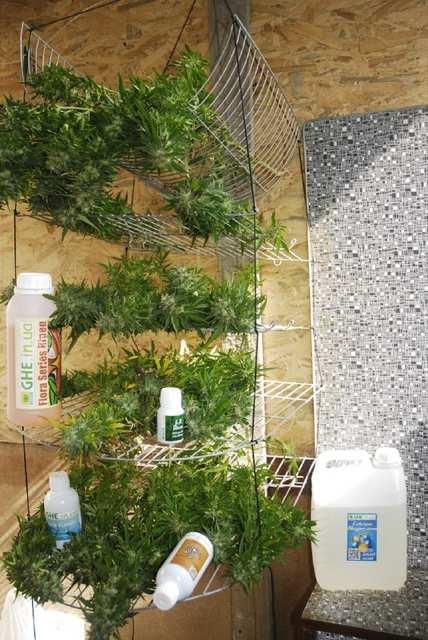 удобрения от Green Power