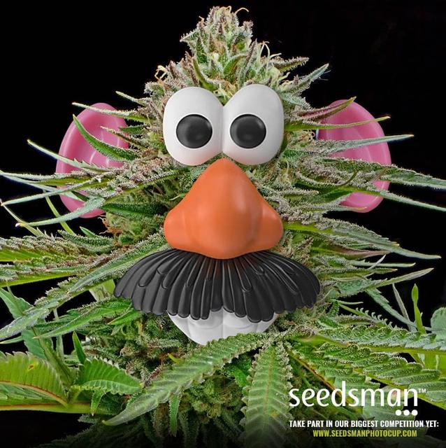 Seedsman™