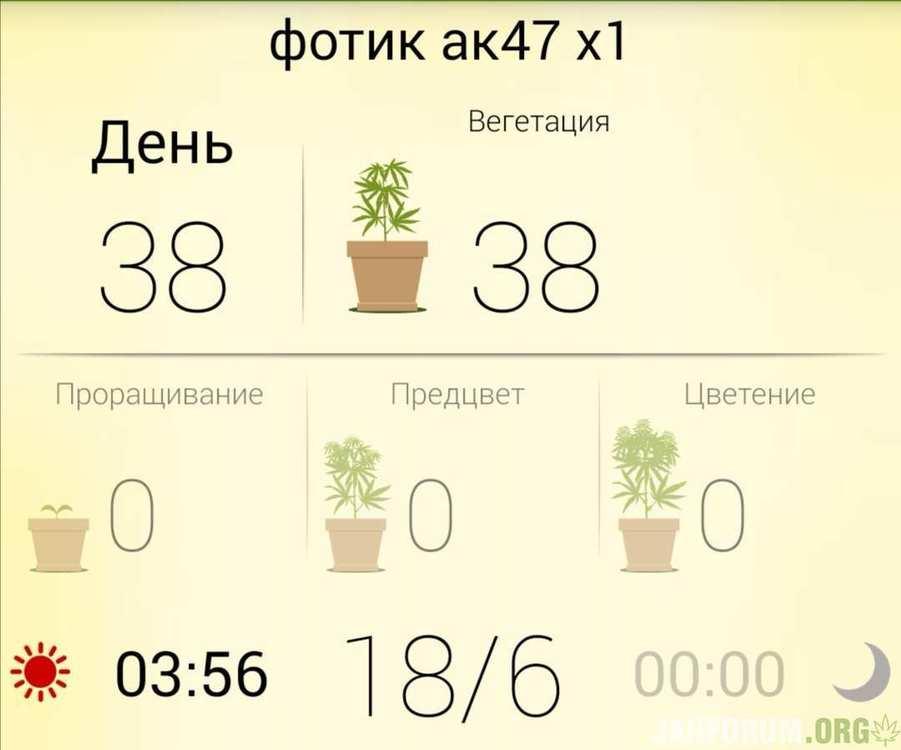 Screenshot_20200319_140440.jpg