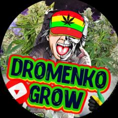 dromenkogrow