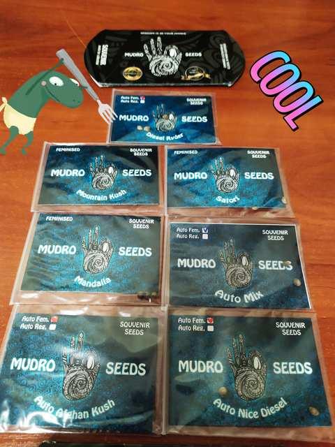Mudro Seeds