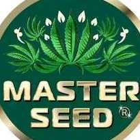 IvanMasterSeed