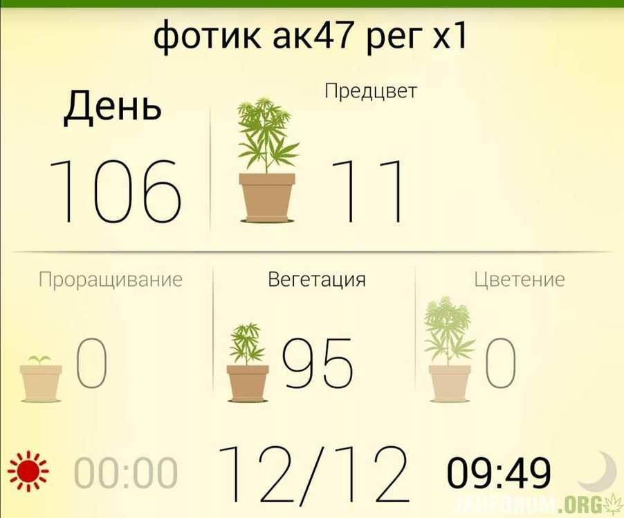 Screenshot_20200524_141123.jpg