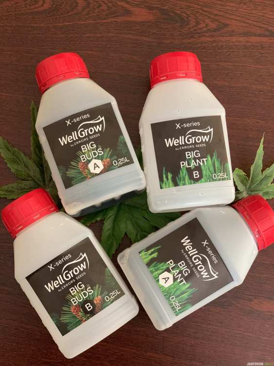 well-grow-x.jpeg