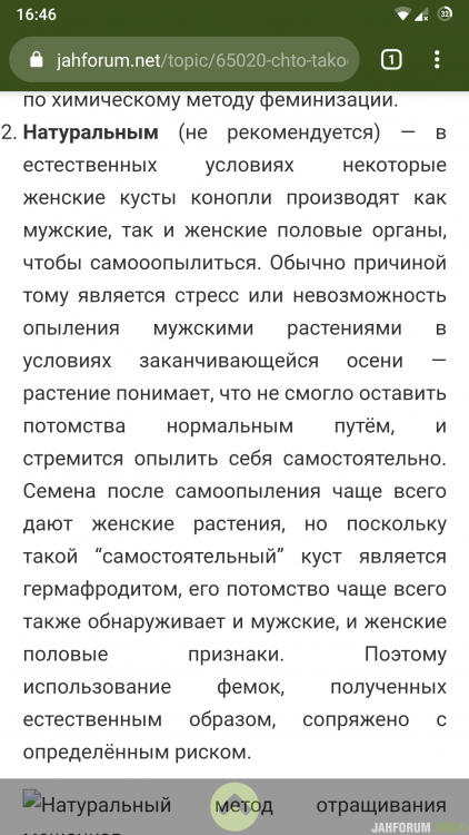 Screenshot_20200816-164636_Chrome.png