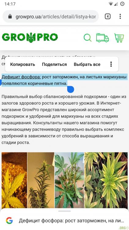 Screenshot_20200920-141722_Chrome.png