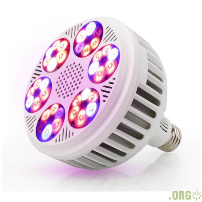 fitolampae27120w-700x700.png
