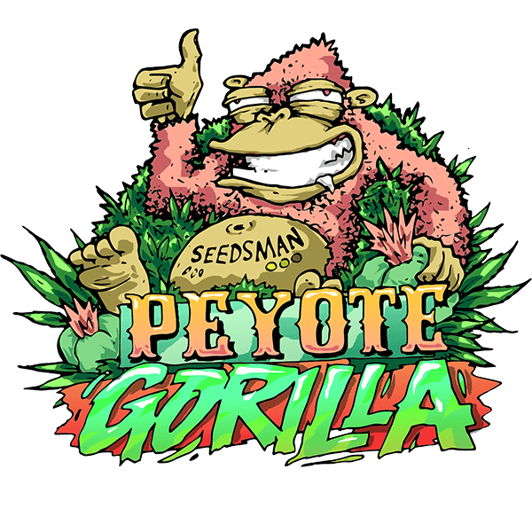 Peyote Gorilla